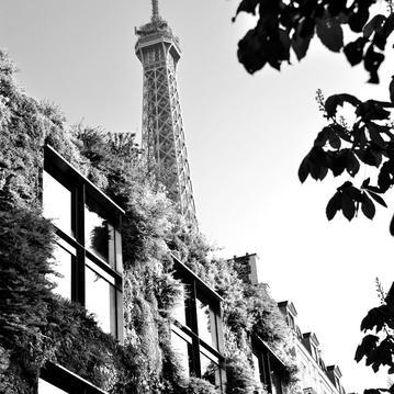 le musée du quai branly - jacques chirac